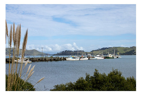 Coromandel Wharf