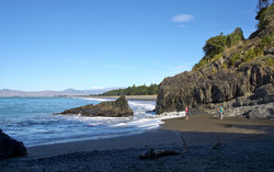 Monkey Bay South Is NZ