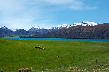 Lake Coleridge, South Is NZ