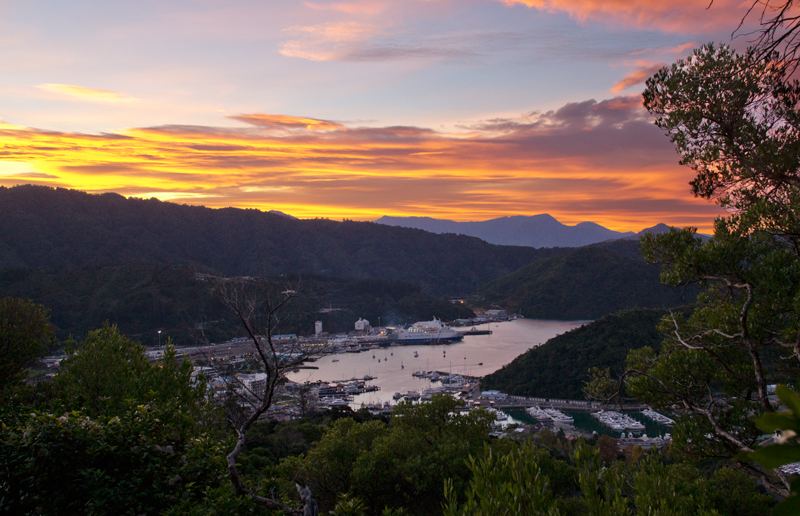 Picton sunset