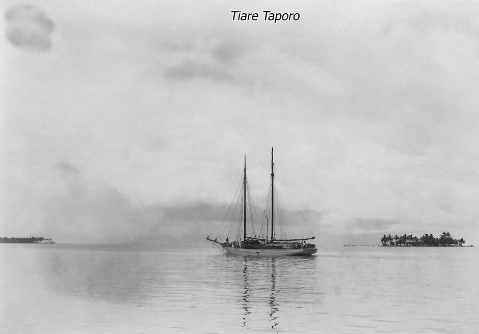 La-Tiare-Taporo(86x60)_4.jpg