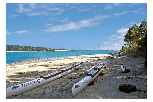 Hokianga canoes