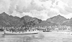 'Charlotte Donald' Rarotonga