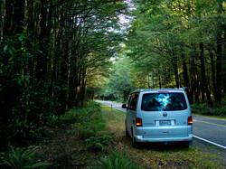 VW Lewis Pass