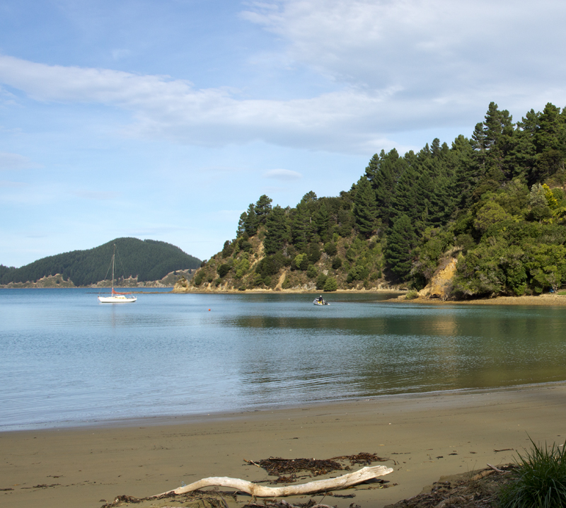 Tom Canes Bay Marlborough Sounds