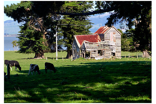 Lake Wairarapa Farmhouse