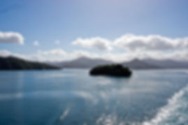 Marlborough Sounds, South Island NZ
