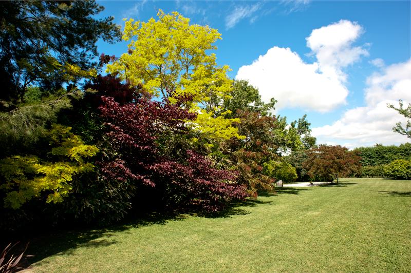 Redcliffe Homestead garden Taradale