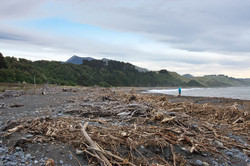 The beach at Kekerengu