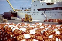 Unloading onions at Newhaven