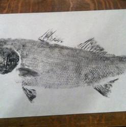 Pete's Fish Tales