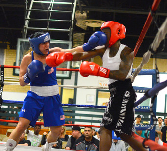 Superstar Amateur Standout Boxer Amanda Pavone makes her Pro Debut on 7-30-2016 on the Murphy's Boxi