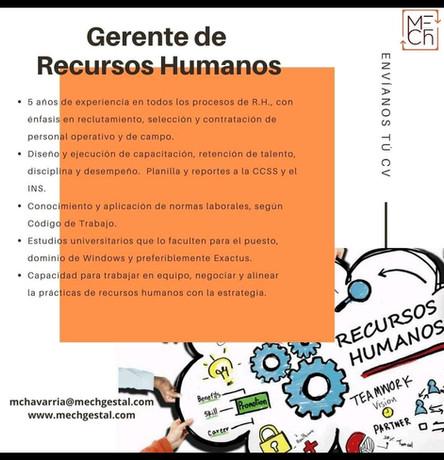 Gerente de Recursos Humanos
