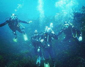 Niveau 2 plongée Camaret sur Mer Club l