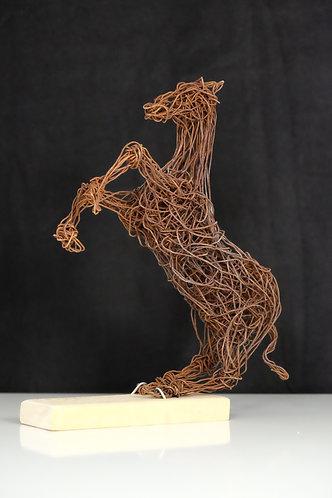 Murat Taskin: steigendes Pferd