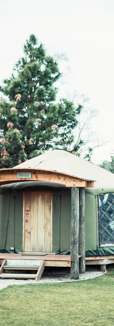 Oasis Yurts Wanaka NZ