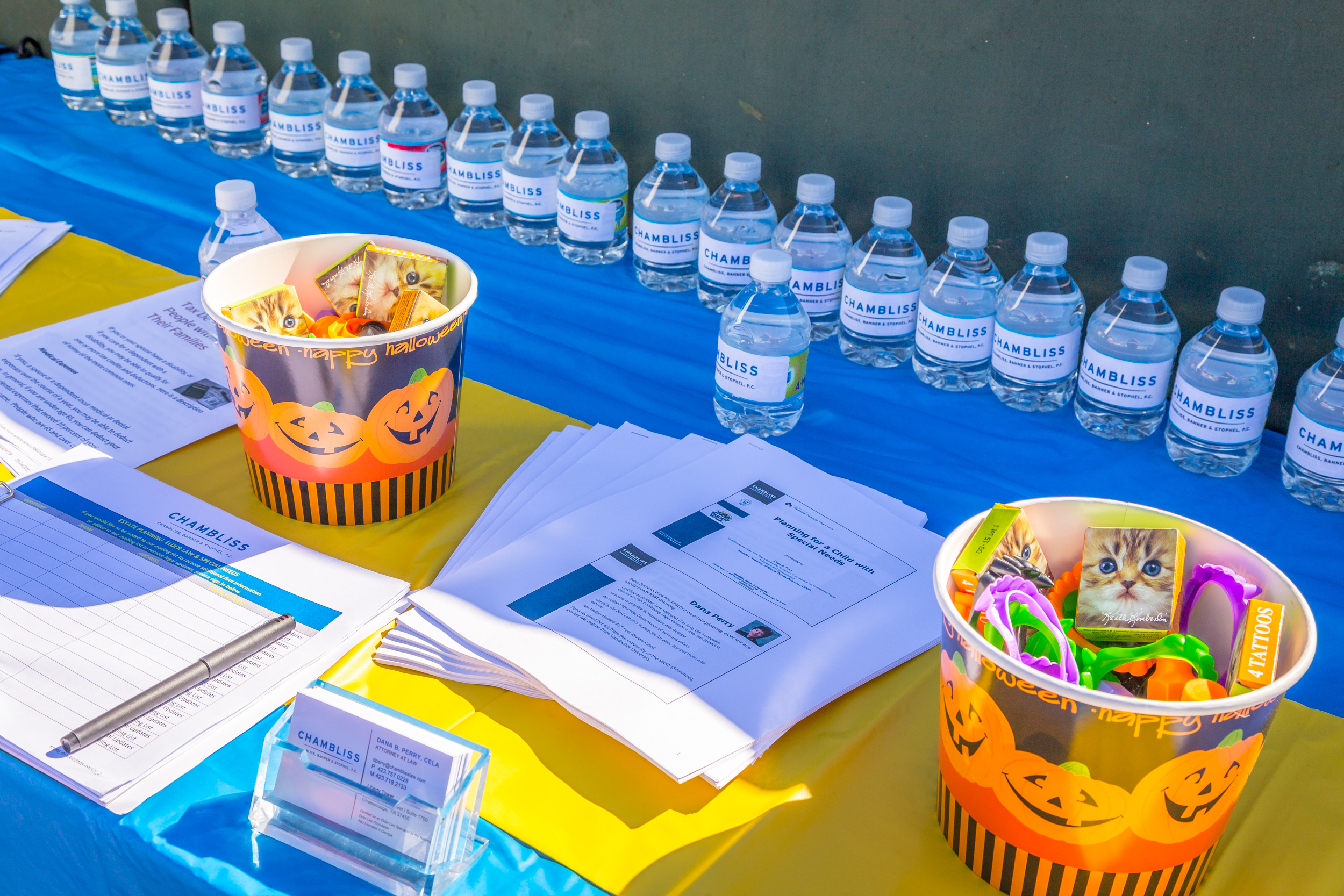 2015 CDSS Buddy Walk-68.jpg
