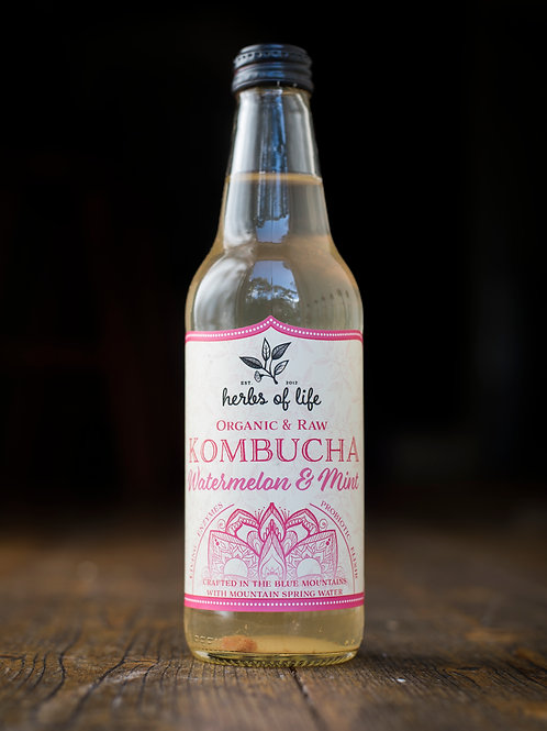 Kombucha Carton - Watermelon & Mint