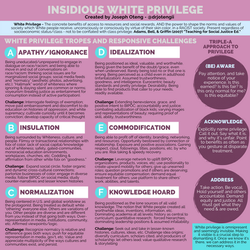 Insidious White Privilege.png