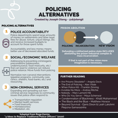 (8) Policing Alternatives.png