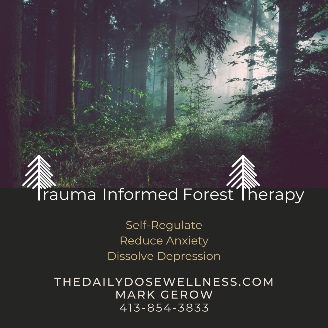 Trauma Informed Forest Therapy