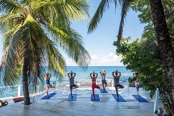 Yoga & Meditation Retreats