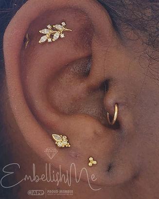 Brittanys curated ear.jpg