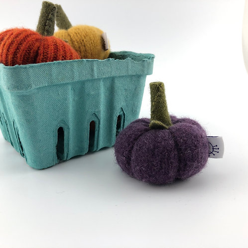 Miniature Pumpkin - Purple