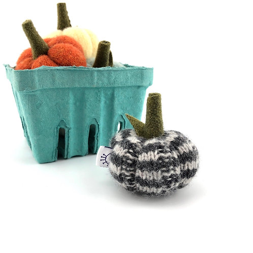 Miniature Pumpkin - Gray Stripe