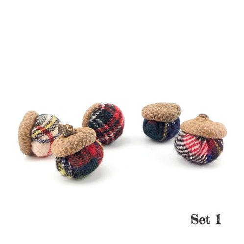 Acorns - Set of 5