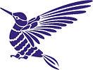 Colibri-naieli-design-samantha-milhet.jp