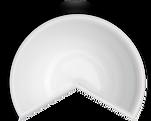 bowl_site.png