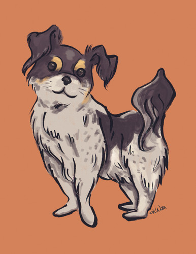 Gertie-petportrait-kasianiton2018.jpg