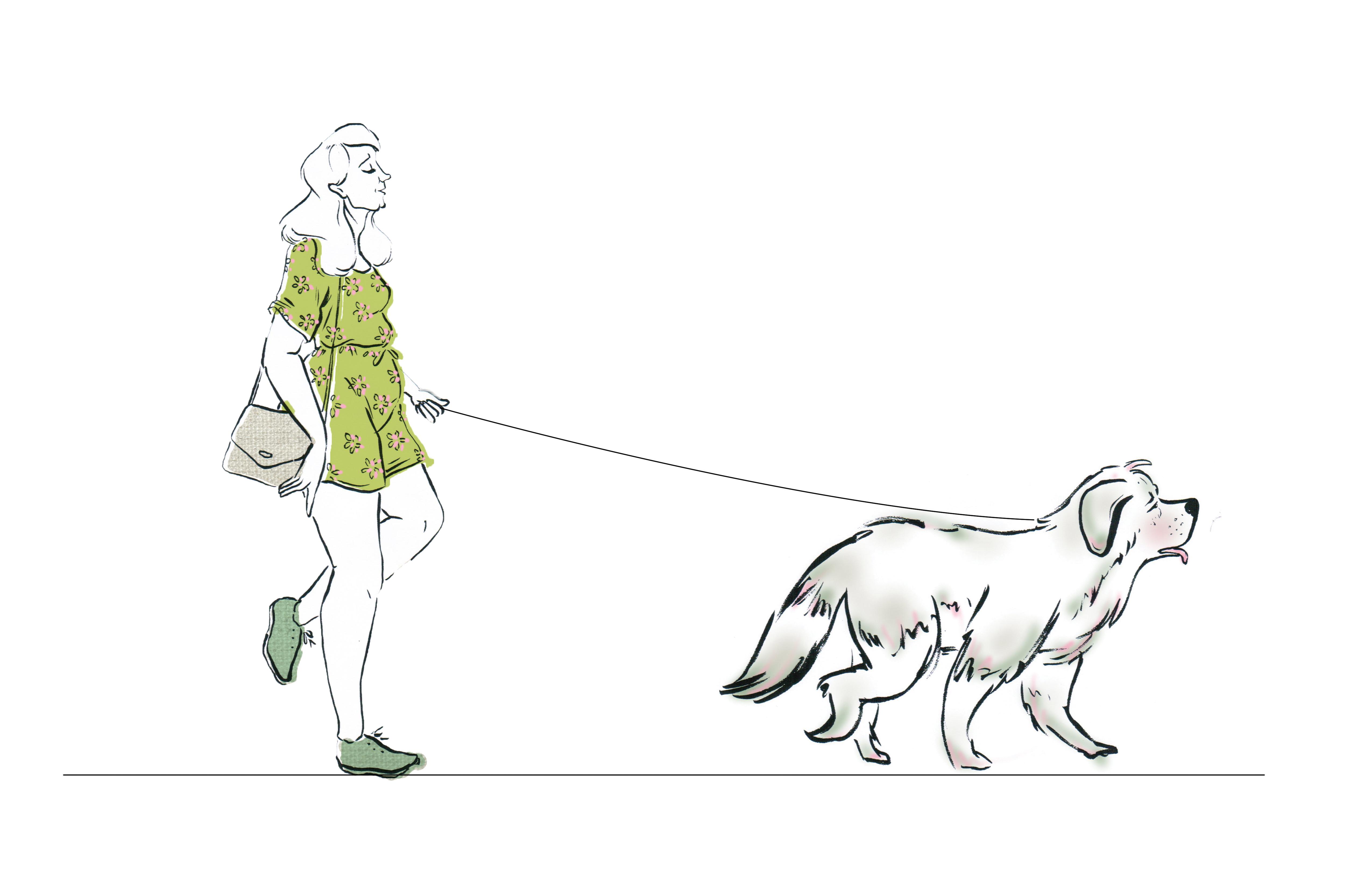 Still from 'Dogs an A - Z'