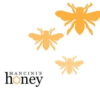 Mancini's Honey Logo + Brochure