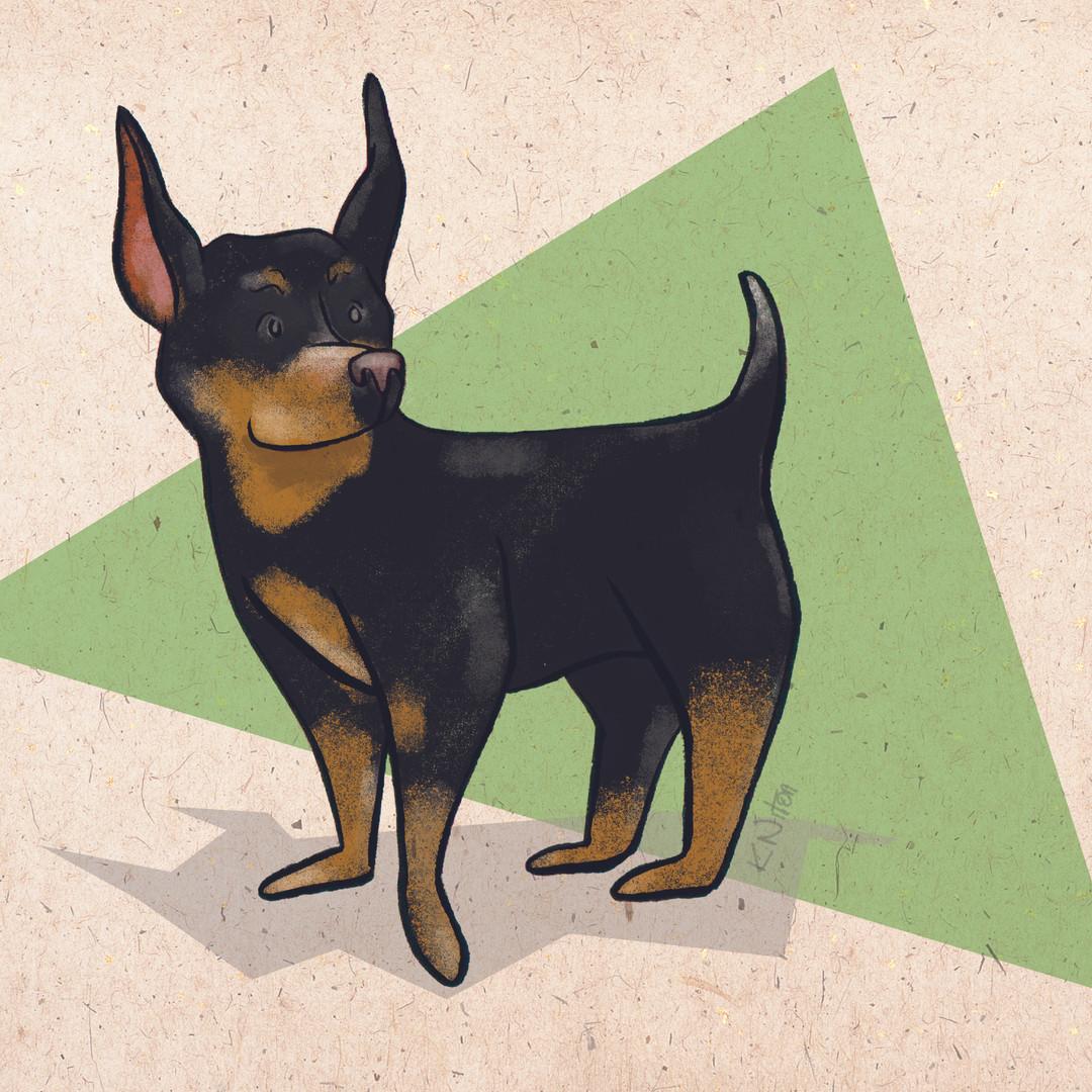 Pet Portrait Illustration