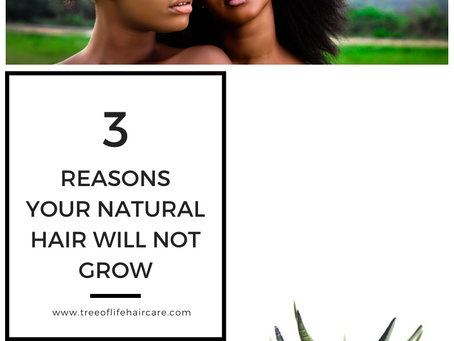 3 Reasons Your Natural Hair Will Not Grow!