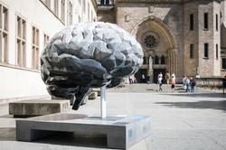 brain_pierrard_2