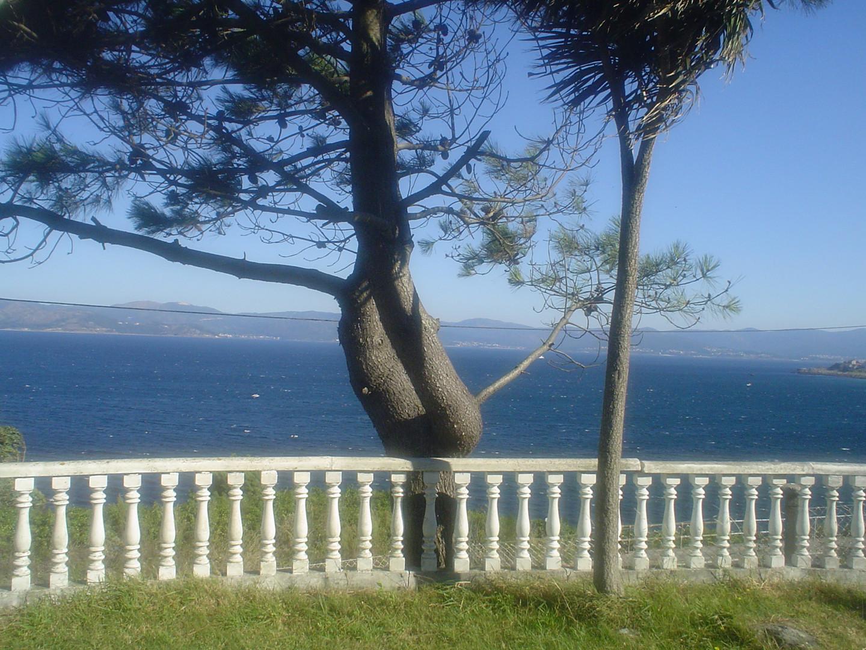 vista sobre el mar.JPG