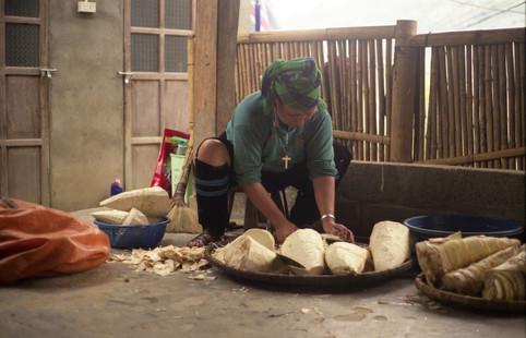 Slicing bamboo shoots for pickling