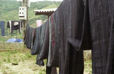 Hmong indigo