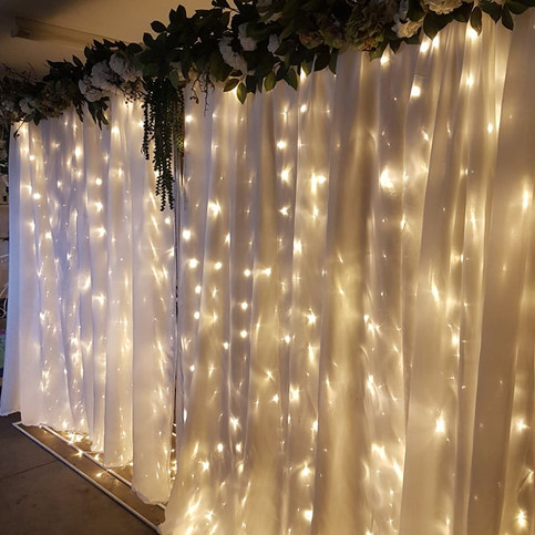Reception Curtain wall,flowers and lights