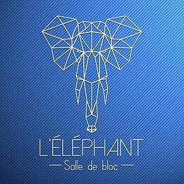éléphant logo.jpg