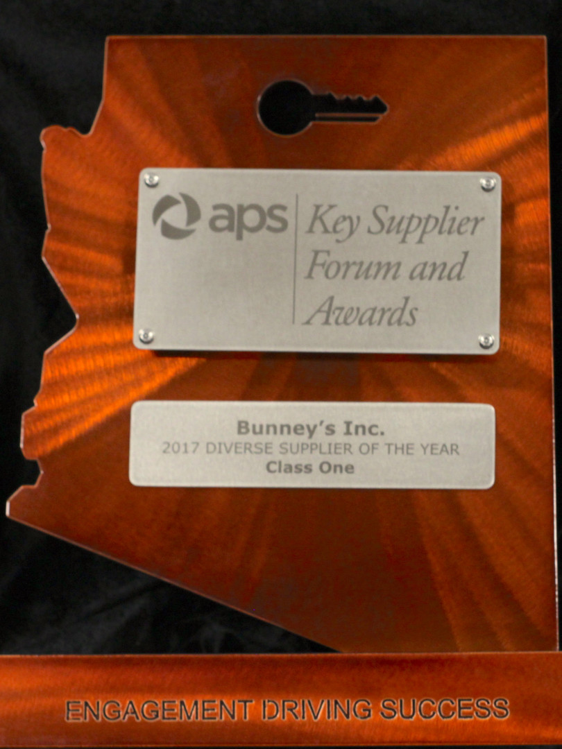 APS 2017 Diverse Supplier of the Year.jpg