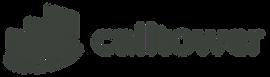 CallTower logo.png