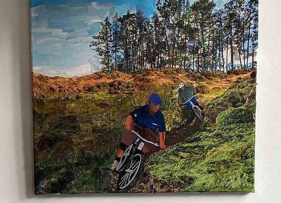 Haldon Hill Mountain Biker Picture