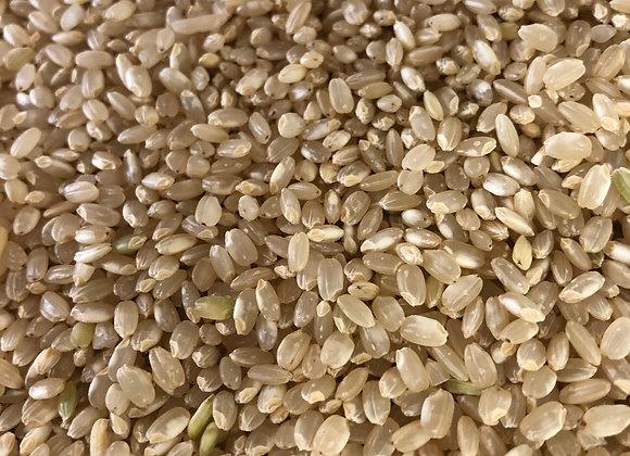 Short Grain Brown Rice - Organic