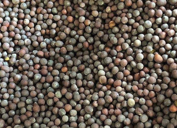 Mustard Seed Black - Organic