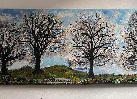 Landscape & Four Trees Picture