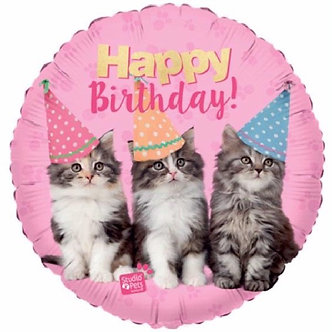 18IN B/DAY KITTENS FOIL BALLOON